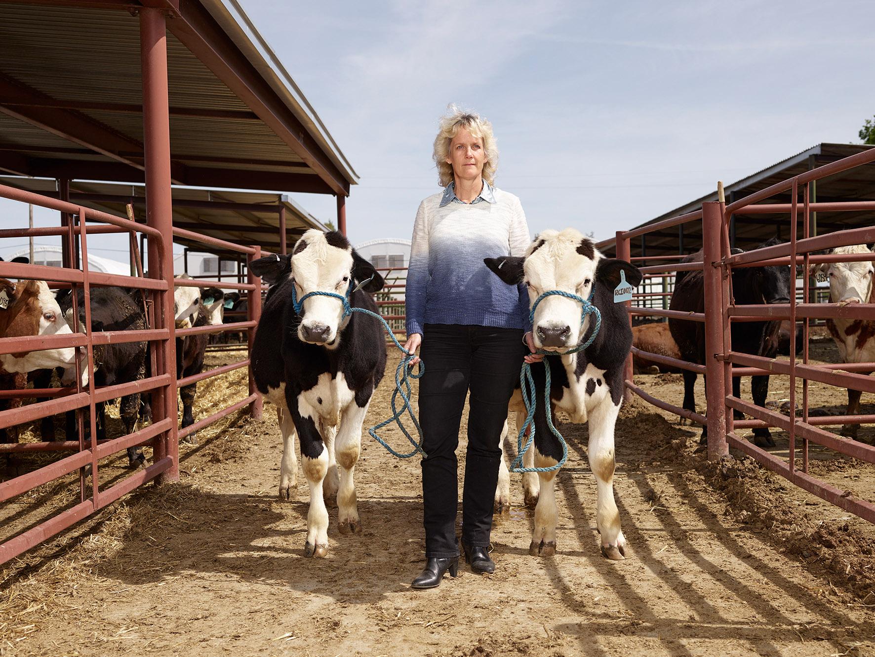 Alison Van Eenennaam mit den Bullen